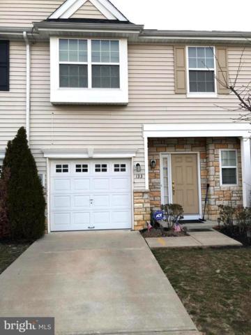 133 Evergreen Court, MOUNT ROYAL, NJ 08061 (#NJGL229098) :: Colgan Real Estate