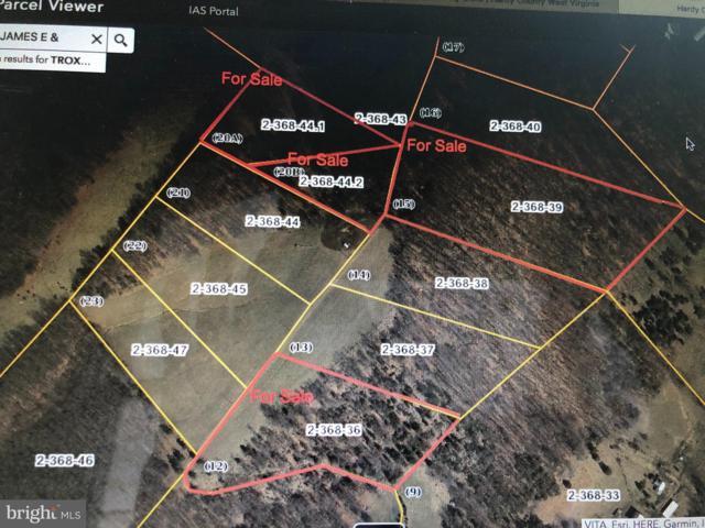 15 BIG RIDGE, LOST RIVER, WV 26810 (#WVHD104548) :: Hill Crest Realty