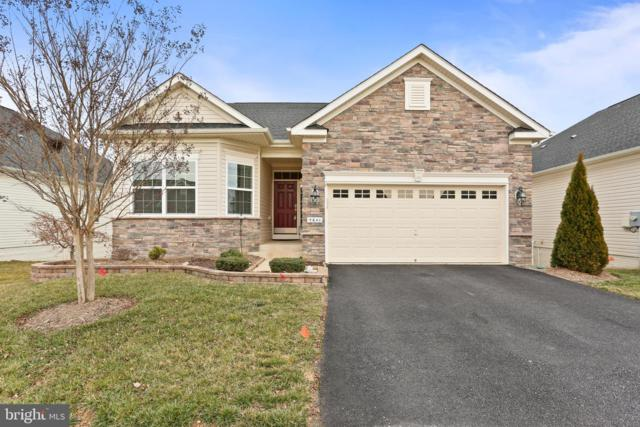 5641 Cedar Mountain Court, FREDERICKSBURG, VA 22407 (#VASP203236) :: Tessier Real Estate