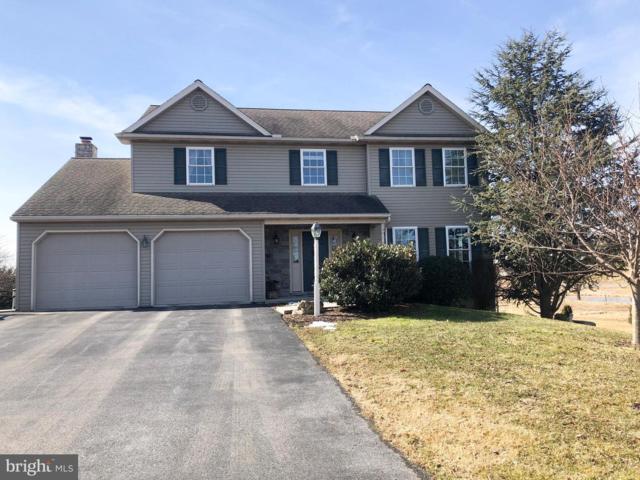 1389 Cold Springs Road, ELIZABETHTOWN, PA 17022 (#PALA122774) :: Flinchbaugh & Associates