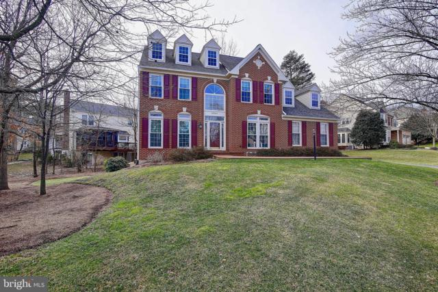 43267 Watershed Court, ASHBURN, VA 20147 (#VALO353500) :: Great Falls Great Homes