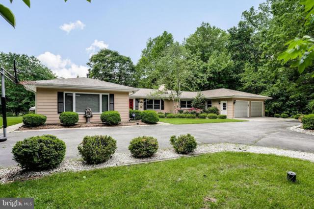 3906 W Shore Drive, EDGEWATER, MD 21037 (#MDAA374656) :: Colgan Real Estate