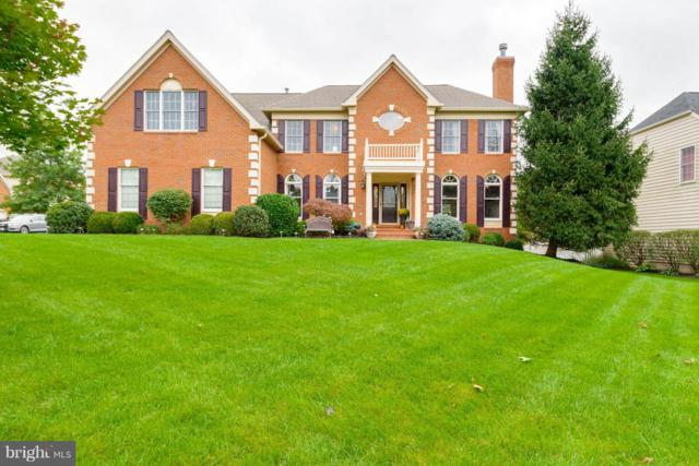 43647 Cypress Village Drive, ASHBURN, VA 20147 (#VALO353546) :: AJ Team Realty