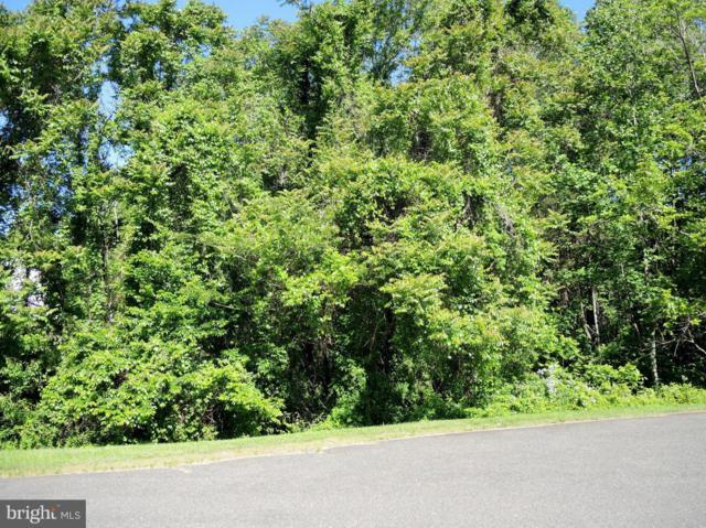 Pond View Court, CULPEPER, VA 22701 (#VACU134604) :: Eng Garcia Grant & Co.