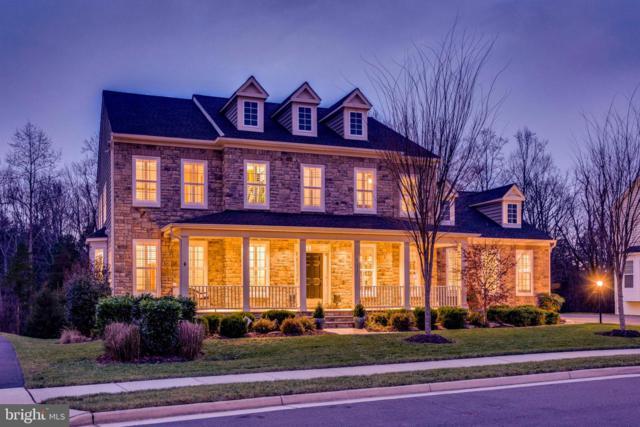 41517 Goshen Ridge Place, ALDIE, VA 20105 (#VALO353590) :: Pearson Smith Realty