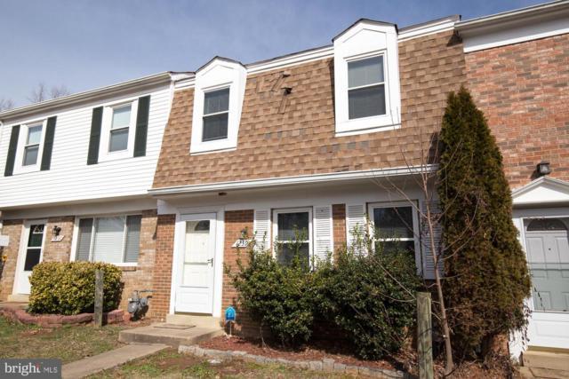 1239 Thomas Jefferson Place, FREDERICKSBURG, VA 22405 (#VAST200842) :: Century 21 New Millennium