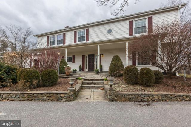 18679 Silcott Springs Road, PURCELLVILLE, VA 20132 (#VALO353602) :: Pearson Smith Realty