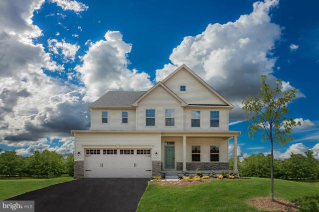 5257 American Beech Street, FREDERICK, MD 21703 (#MDFR232930) :: ExecuHome Realty