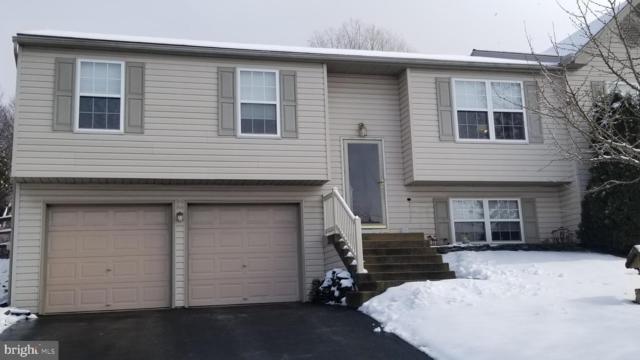 201 Beech Street, DENVER, PA 17517 (#PALA122906) :: The Craig Hartranft Team, Berkshire Hathaway Homesale Realty