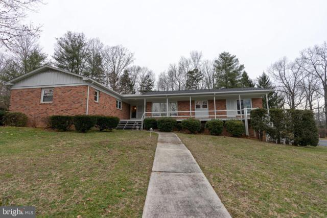 166 Vistamont Drive, LURAY, VA 22835 (#VAPA103824) :: The Withrow Group at Long & Foster