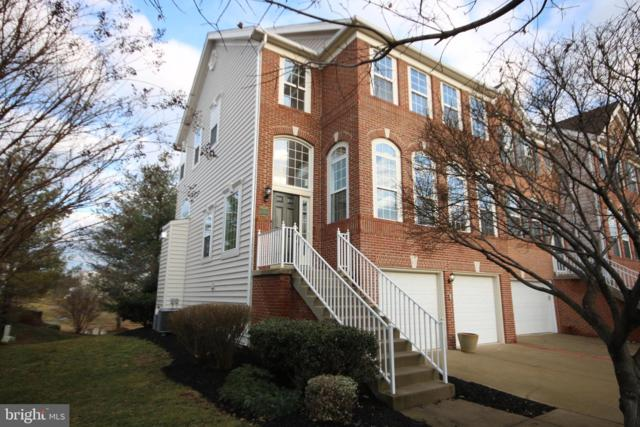 44080 Saxony Terrace, ASHBURN, VA 20147 (#VALO353766) :: AJ Team Realty