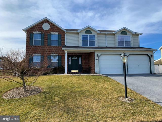 195 Martel Circle, DILLSBURG, PA 17019 (#PAYK110520) :: The Heather Neidlinger Team With Berkshire Hathaway HomeServices Homesale Realty