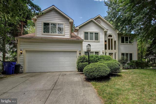 6417 Misty Top Pass, COLUMBIA, MD 21044 (#MDHW249954) :: Remax Preferred | Scott Kompa Group