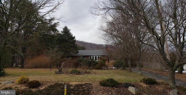 12717 Gramlich Road SW, LAVALE, MD 21502 (#MDAL130020) :: Colgan Real Estate