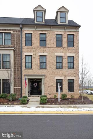 42239 Riggins Ridge Terrace, BRAMBLETON, VA 20148 (#VALO353790) :: Colgan Real Estate