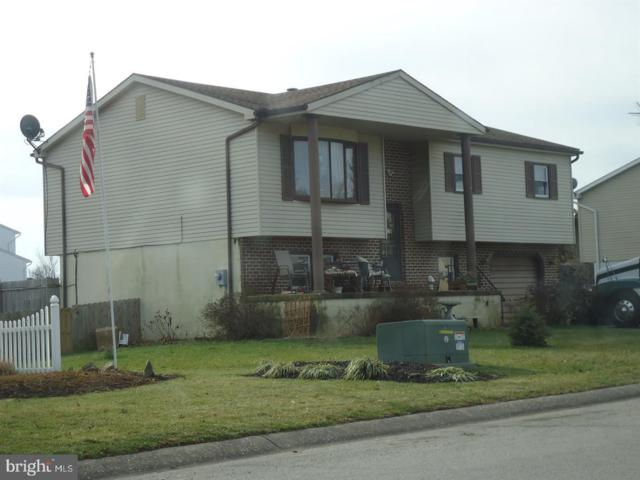 3286 Night In Gale Drive, DOVER, PA 17315 (#PAYK110566) :: ExecuHome Realty