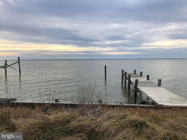 1230 Horse Point Road, FISHING CREEK, MD 21634 (#MDDO121640) :: Coastal Life Realty Group