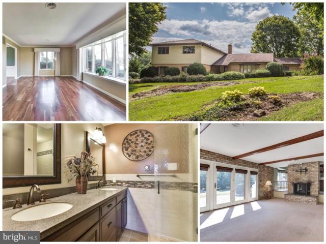16525 Tammany Lane, WILLIAMSPORT, MD 21795 (#MDWA158790) :: Colgan Real Estate