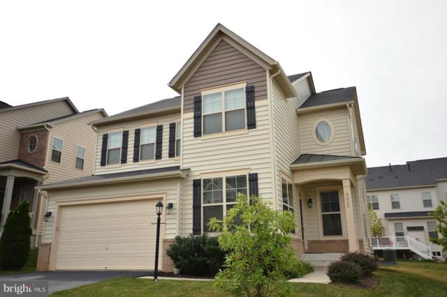 42790 Macauley Place, ASHBURN, VA 20148 (#VALO353922) :: AJ Team Realty
