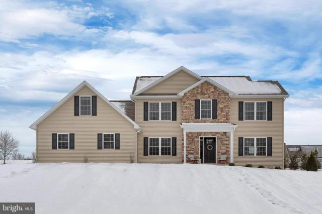 81 Old Mill Road, SHERMANS DALE, PA 17090 (#PAPY100428) :: The Heather Neidlinger Team With Berkshire Hathaway HomeServices Homesale Realty