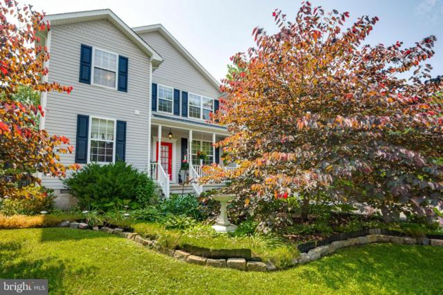 3855 Holly Drive, EDGEWATER, MD 21037 (#MDAA375198) :: Eng Garcia Grant & Co.