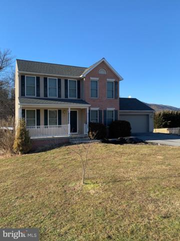 4261 Charlestown Road, MERCERSBURG, PA 17236 (#PAFL160584) :: The Joy Daniels Real Estate Group