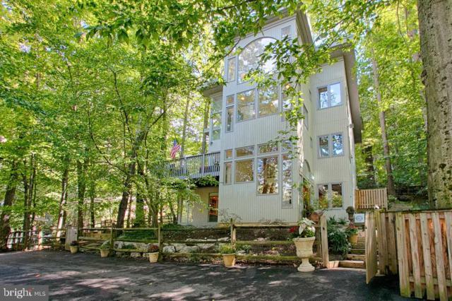 6413 Lakeview Drive, FALLS CHURCH, VA 22041 (#VAFX994618) :: Colgan Real Estate