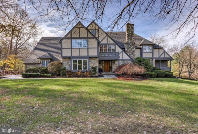 13 Wetherbee Court, PHOENIX, MD 21131 (#MDBC433006) :: Blue Key Real Estate Sales Team