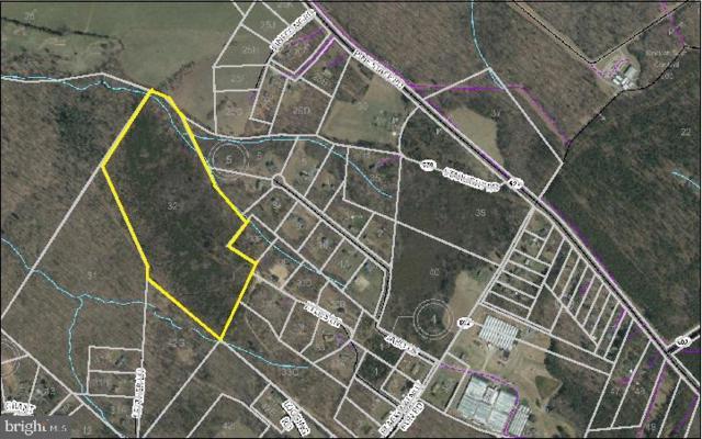 Black Walnut Run Road, RHOADESVILLE, VA 22542 (#VAOR131154) :: Network Realty Group