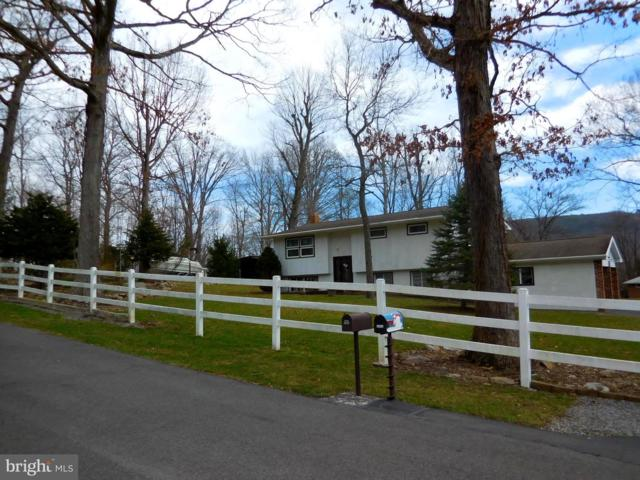 12814 Woodbine Road SW, LAVALE, MD 21502 (#MDAL130040) :: Blue Key Real Estate Sales Team