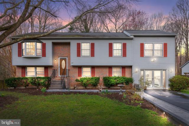 221 Vine Place, STAFFORD, VA 22554 (#VAST201048) :: Colgan Real Estate
