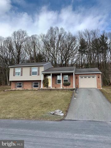 151 Lenker Drive, WILLIAMSTOWN, PA 17098 (#PADA107010) :: The Heather Neidlinger Team With Berkshire Hathaway HomeServices Homesale Realty