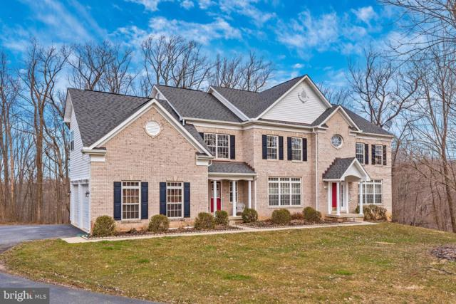 10824 Avonlea Ridge Place, DAMASCUS, MD 20872 (#MDMC621268) :: Colgan Real Estate