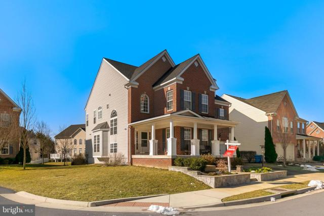 42195 Frontier Spring Drive, CHANTILLY, VA 20152 (#VALO354262) :: Remax Preferred | Scott Kompa Group