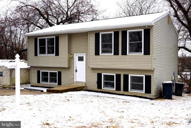 810 Balsamtree Place, CAPITOL HEIGHTS, MD 20743 (#MDPG501654) :: Remax Preferred | Scott Kompa Group