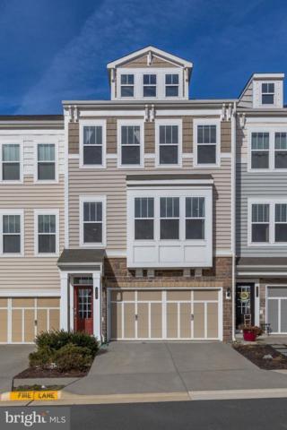 42287 Jessica Farm Terrace, ASHBURN, VA 20148 (#VALO354278) :: Colgan Real Estate