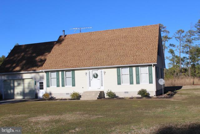 3203 Bay View Drive, CHURCH CREEK, MD 21622 (#MDDO121668) :: The Allison Stine Team