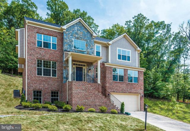 146 Accipiter Drive, NEW MARKET, MD 21774 (#MDFR233310) :: Circadian Realty Group