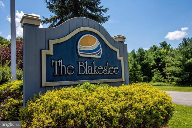 S Blakeslee Road, OAKLAND, MD 21550 (#MDGA128762) :: Eng Garcia Grant & Co.