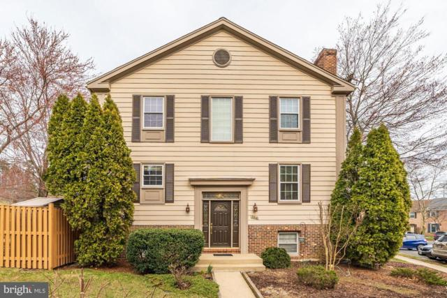 7516 Amesbury Court, ALEXANDRIA, VA 22315 (#VAFX995424) :: Great Falls Great Homes
