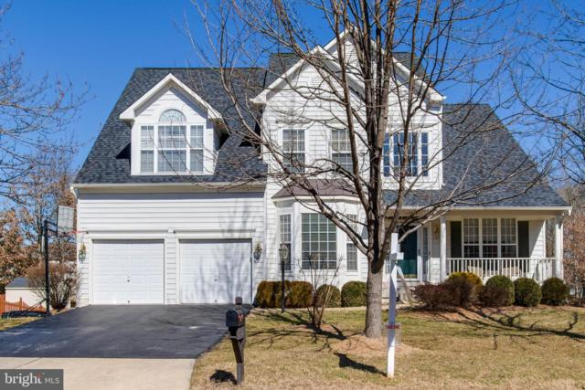 42824 Vestals Gap Drive, BROADLANDS, VA 20148 (#VALO354386) :: Great Falls Great Homes