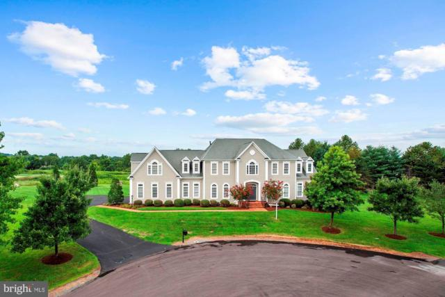16321 Limestone Court, LEESBURG, VA 20176 (#VALO354416) :: Remax Preferred | Scott Kompa Group