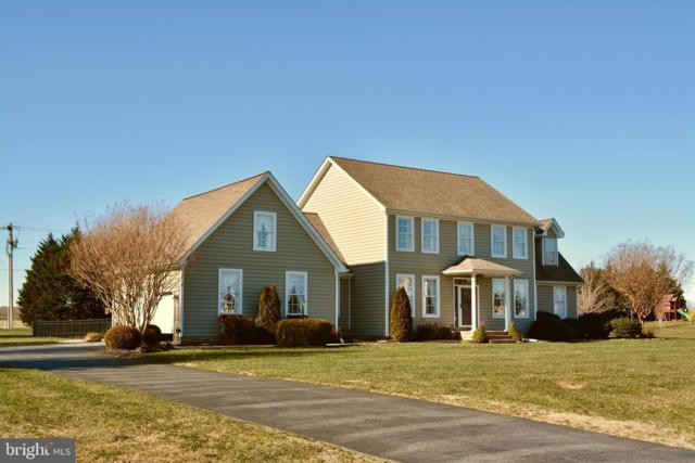 1172 Raven Circle, CAMDEN WYOMING, DE 19934 (#DEKT220258) :: Remax Preferred | Scott Kompa Group