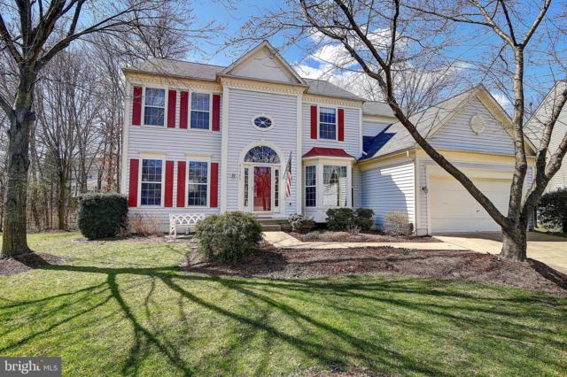 21505 Hearthstone Court, BROADLANDS, VA 20148 (#VALO354486) :: Great Falls Great Homes