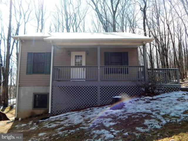 501 Buntline Drive, WINCHESTER, VA 22602 (#VAFV145122) :: Colgan Real Estate