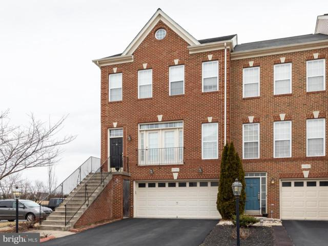 42090 Tanzanite Terrace, ALDIE, VA 20105 (#VALO354496) :: Remax Preferred | Scott Kompa Group