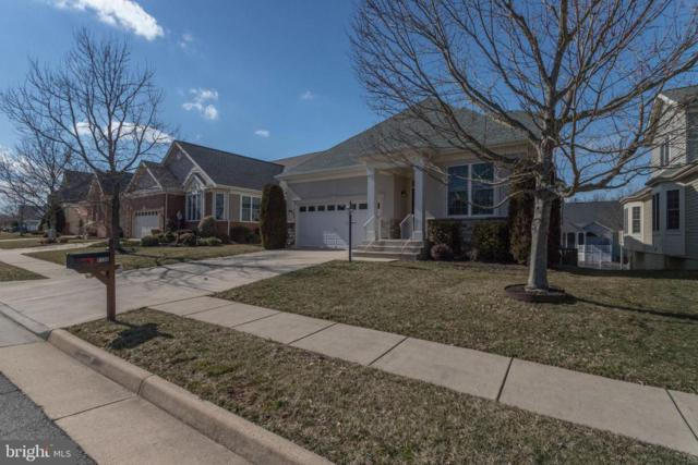 6136 Ferrier Court, GAINESVILLE, VA 20155 (#VAPW433832) :: Larson Fine Properties