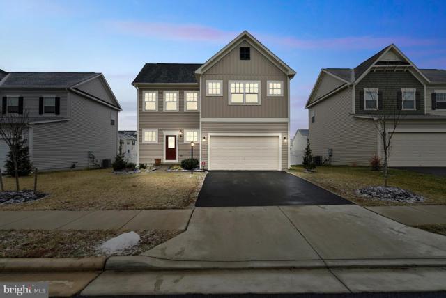 11921 Blue Violet Way, BRISTOW, VA 20136 (#VAPW433854) :: Colgan Real Estate