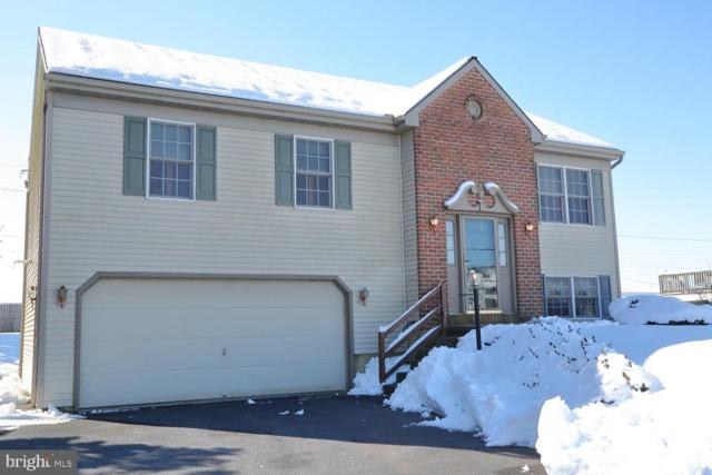 846 E Main Street, MOUNT JOY, PA 17552 (#PALA123472) :: The Heather Neidlinger Team With Berkshire Hathaway HomeServices Homesale Realty