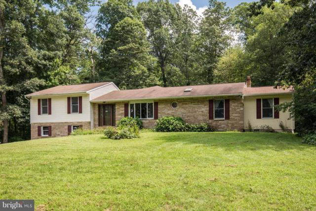 3871 Fringer Road, TANEYTOWN, MD 21787 (#MDCR181924) :: ExecuHome Realty